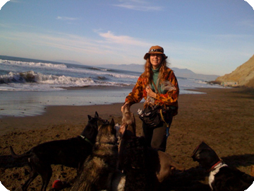 Ruth Jensen at Fort Funston with the dogs she walks